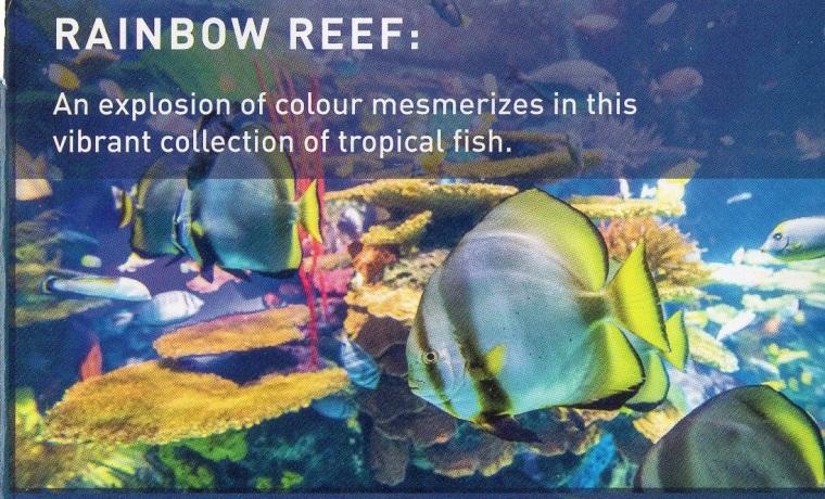 img005-Rainbow Reef